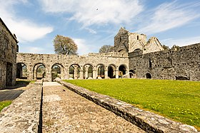 Digital Eye–2015–Boyle Abbey.jpg