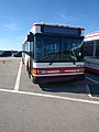 Disney Bus Number 4936-06 (31292293110).jpg