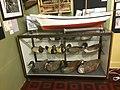 Display of decoys, Tangier History Museum.jpg