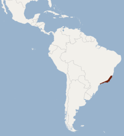 Distribution of Lonchophylla peracchii.png