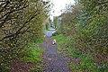 Ditton Lane, Moreton 5.jpg