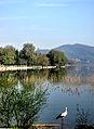 Dojran Lake 247.jpg
