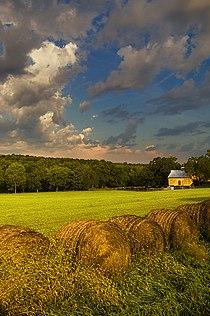 Douglas County Kansas USA.jpg