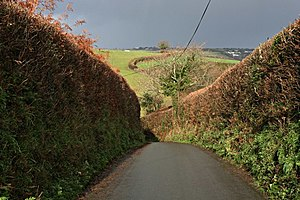 Cornish hedge - Image: Down to the Valley Below geograph.org.uk 292281