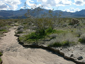 Dry river bed in California.jpg