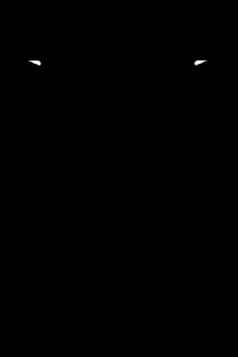 Gestalt einer Zikadenwespe, Weibchen