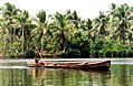Dugout canoe Rennell.jpg