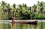 Man paddling a wooden dugout canoe on a flat lagoon surrounded by palm trees