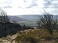 Edge of Easby Moor - geograph.org.uk - 718959.jpg
