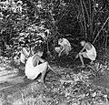 Een man en drie jongens bij een blootgelegd graf op de voormalige Jodensavanna i, Bestanddeelnr 252-6466.jpg