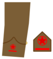 Ejerpopulardivi12.png