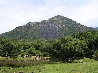 Los Alcornocales Natural Park - Image: El Picacho