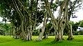 El Salvador - San Salvador CCC 201309 - panoramio (13).jpg