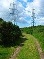 Electricity Pylons, Lydd Ranges - geograph.org.uk - 448880.jpg