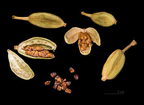 Elettaria cardamomum Capsules and seeds.jpg
