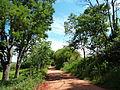 Estrada para bairro Rio Abaixo.jpg