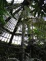 Estufa de las Palmas del Real Jardín Botánico (3 de diciembre de 2006, Madrid) 01.JPG