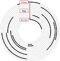 Euglossa hyacinthina - nest construction (schematic) JHR-029-015-g002.jpeg