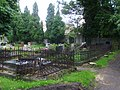 Evangelical Cemetery in Bielsko-Biała (Piłsudkiego) 4.JPG