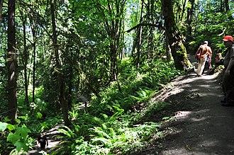 Evans Creek Preserve - Image: Evans Creek Preserve 043 (27319776781)