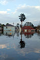 FEMA - 14962 - Photograph by Jocelyn Augustino taken on 08-30-2005 in Louisiana.jpg