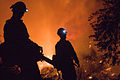 FEMA - 33316 - Firefighters on the fire line in California.jpg