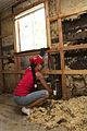 FEMA - 41327 - Resident working on her damaged home interior in Kentucky.jpg