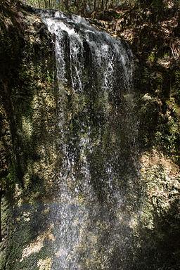 Falling Waters State Park - Wikipedia
