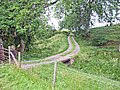 Farm road to Breckney Bed - geograph.org.uk - 207974.jpg