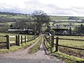 Farm track, to the west of the M5 motorway - geograph.org.uk - 1720313.jpg