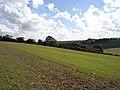 Farmland, Upper Upham - geograph.org.uk - 248648.jpg