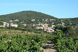 View of Faugères with vineyards in the foreground