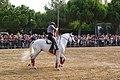 Feria del Caballo - Badalona - panoramio (2).jpg