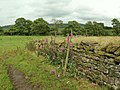 Field Entrance - geograph.org.uk - 488269.jpg