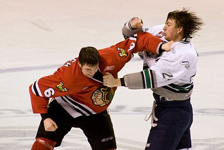 Fighting in ice hockey is officially prohibited in the rules, although it continues to be an established tradition in the sport in North America Fight in ice hockey 2009.JPG