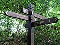 Fingerpost on the Offa's Dyke footpath above Tintern - geograph.org.uk - 480088.jpg