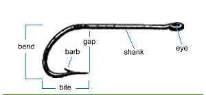 Fishing tackle - A fish hook