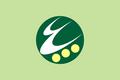 Flag of Itoigawa, Niigata.png