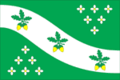 Flag of Malodubenskoe (Moscow oblast).png