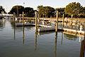 Flamingo - marina, 1, NPSPhoto, R. Cammauf (9255463333).jpg