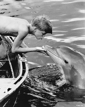 Luke Halpin - Halpin in the 1963 feature film Flipper