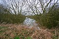 Flooded Quarry near Thistleton, Rutland - geograph.org.uk - 145860.jpg