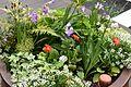 Flower Planter 1 2017-04-21.jpg