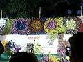 Flower show at tnau.jpg