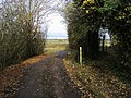Footpath Junction - geograph.org.uk - 1562801.jpg