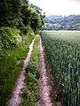 Footpath Trottiscliffe - geograph.org.uk - 491329.jpg