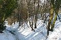 Footpath to Blewbury - geograph.org.uk - 1155402.jpg
