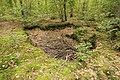 Forêt Départementale de Méridon à Chevreuse le 29 septembre 2017 - 29.jpg