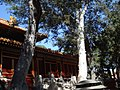 Forbidden City-16 故宫 - panoramio.jpg