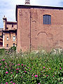 Forum curia across field.jpg